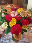 The zinnias were stunning this year, once again!