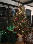Colin and Z's Christmas tree, etc.