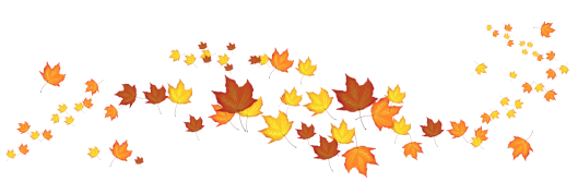 This image has an empty alt attribute; its file name is fall-flourish.png